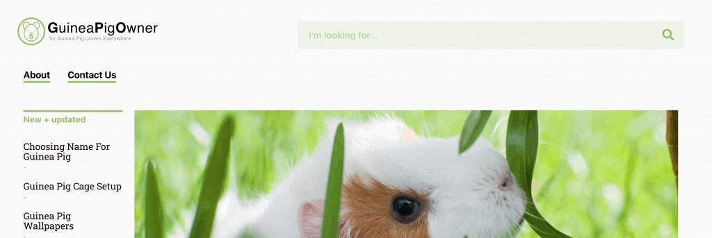 New Site Design for guineapigowner.com